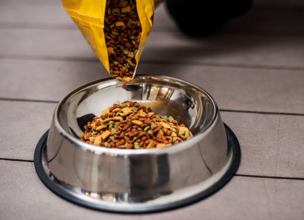 pouring pet food into a bowl - dog food imagens e fotografias de stock