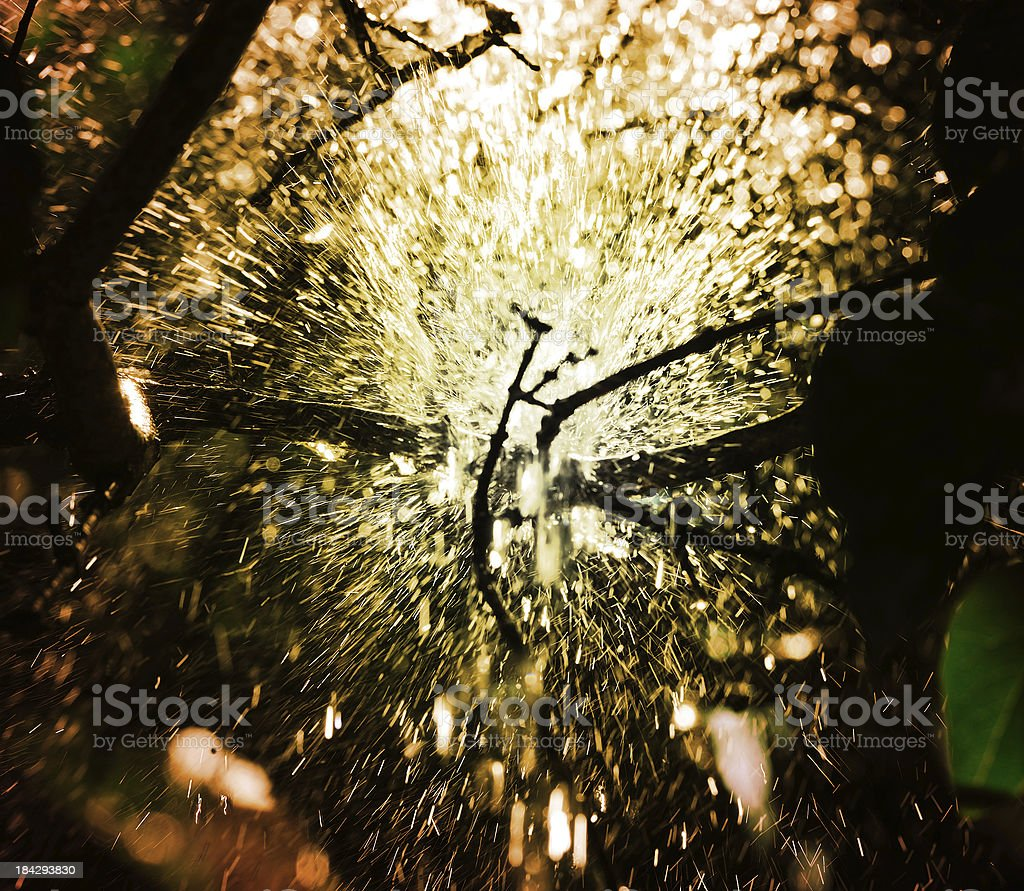 Pouring rain in sunset, seen from under royalty-free stock photo