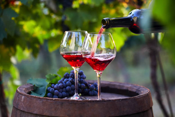 Pouring red wine into glasses stock photo