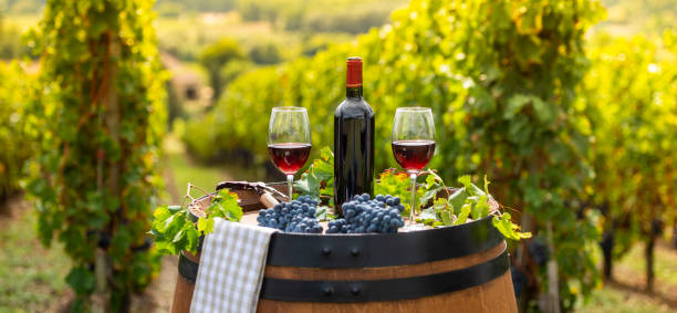 Pouring red wine into the glass, Barrel outdoor in Bordeaux Vineyard Pouring red wine into the glass, Barrel outdoor in Bordeaux Vineyard, France red wine stock pictures, royalty-free photos & images