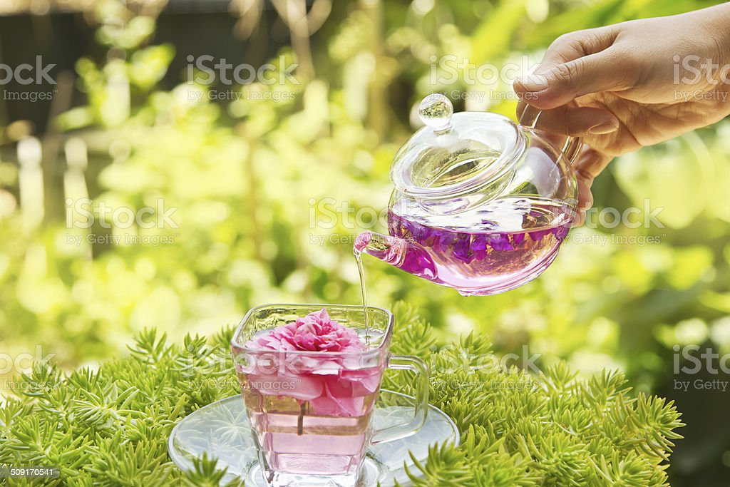 Pouring tea from a teapot stock photo