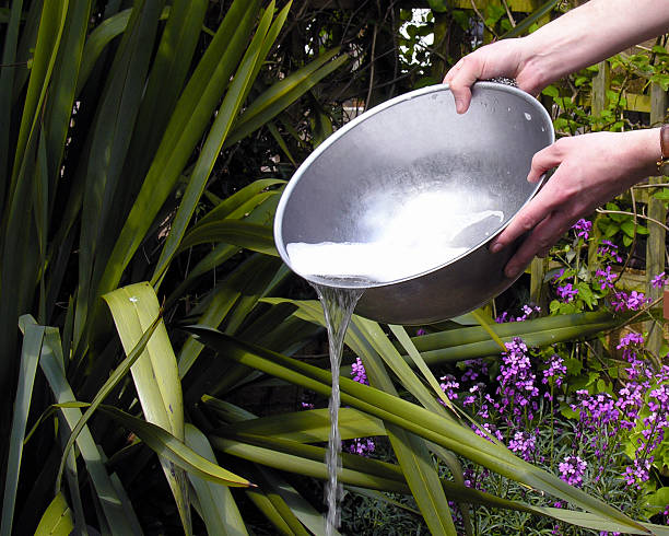 Pouring Water emptying out a bowl of soapy water disgorge stock pictures, royalty-free photos & images