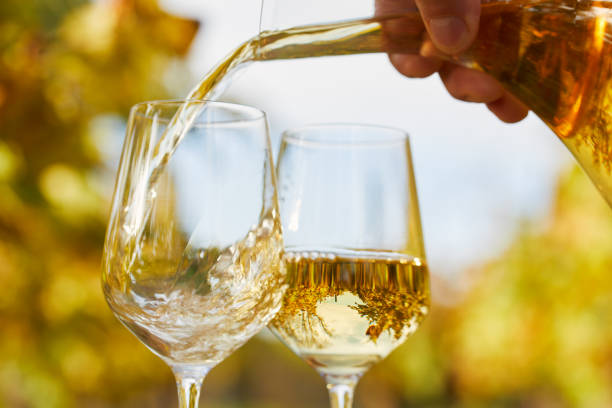 Pouring white wine into glasses in autumn day stock photo