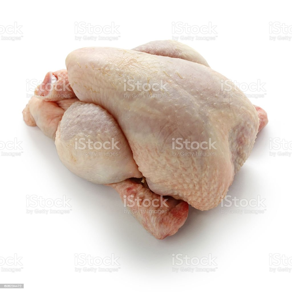 poussin, young chicken stock photo