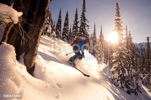 Powder skiing on a sunny day