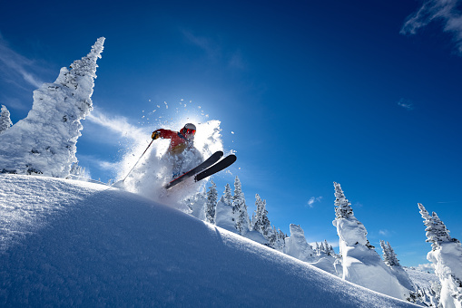 Powder skiing on a sunny day.