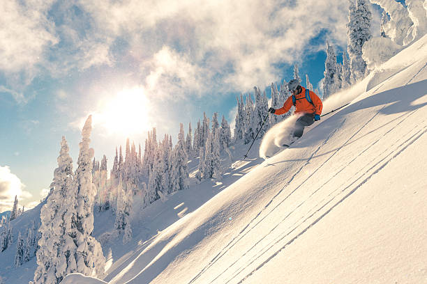 Powder skiing Skier on powder slope. powder snow stock pictures, royalty-free photos & images