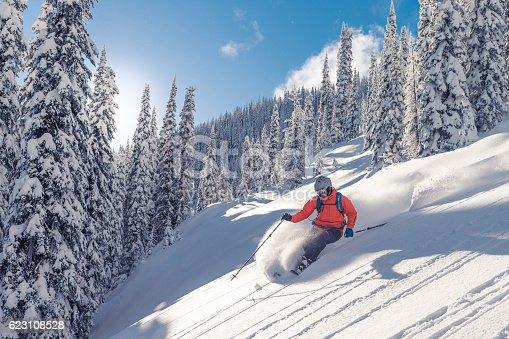Male skier on powder slope.