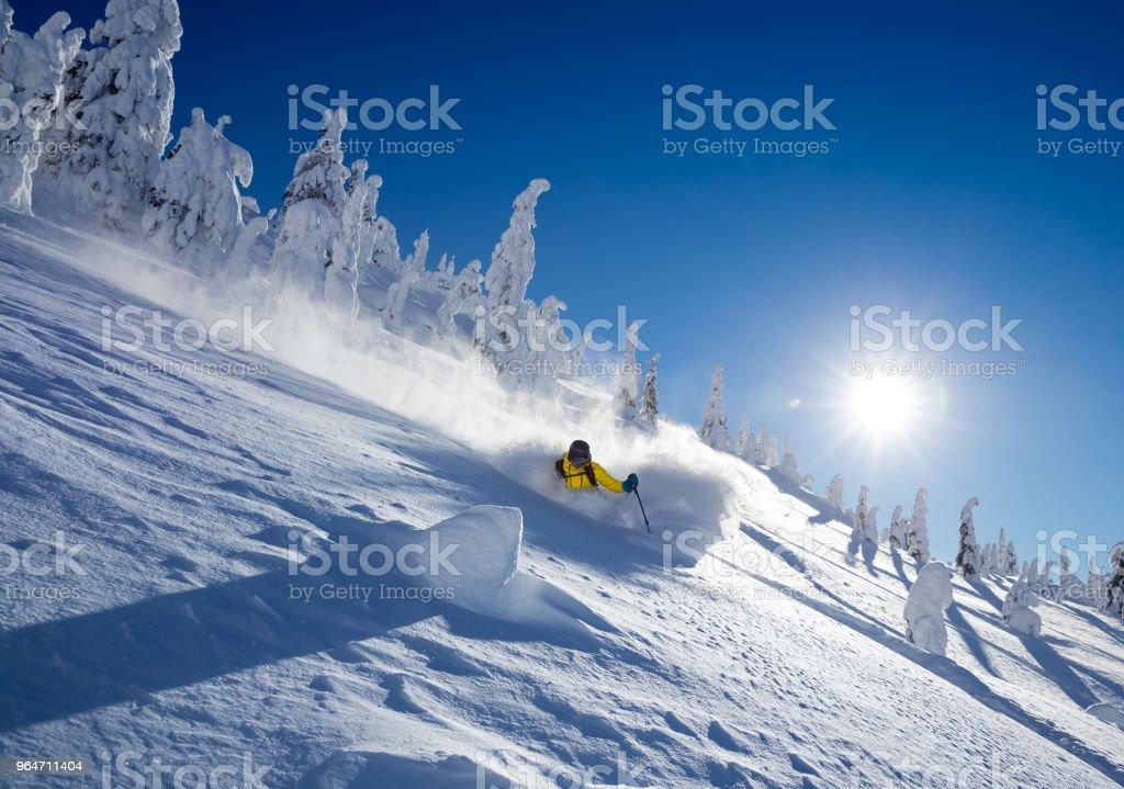 Powder skiing royalty-free stock photo