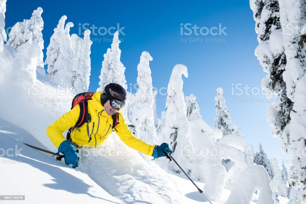 Powder skiing royalty-free stock photo