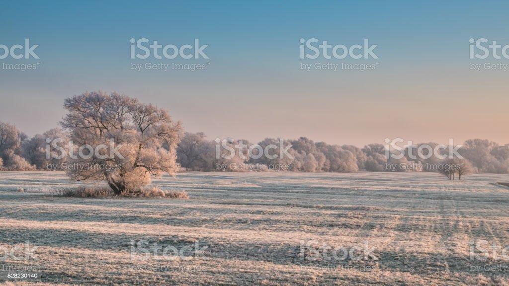 powdered sugar landscape stock photo