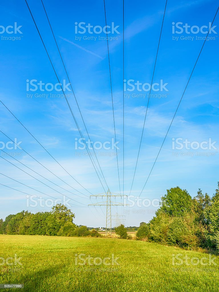 Power calbe over green meadow stock photo