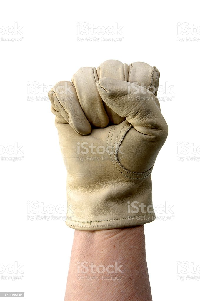 Power Fist royalty-free stock photo