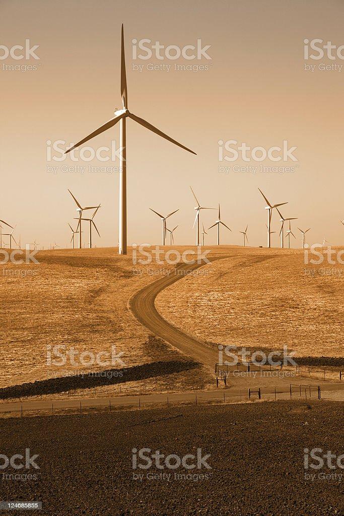 Power Generating Wndmills stock photo