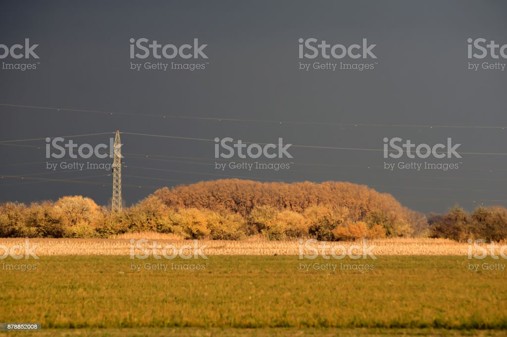 Power line in the sunshine before the storm. stock photo