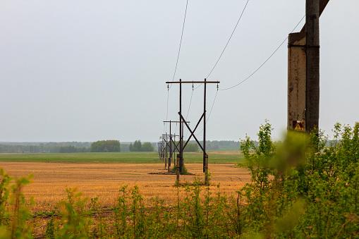 Power line wooden poles