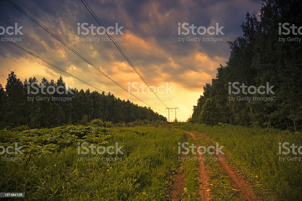 Power lines and forest road at sunset royalty-free stock photo