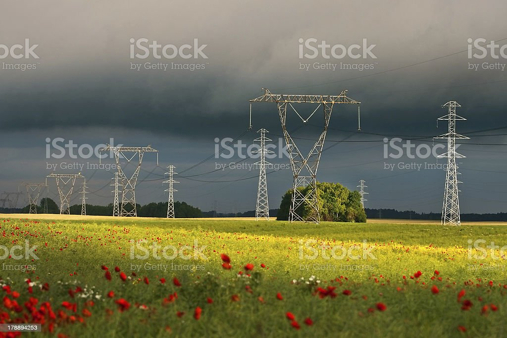 Power lines at dawn royalty-free stock photo
