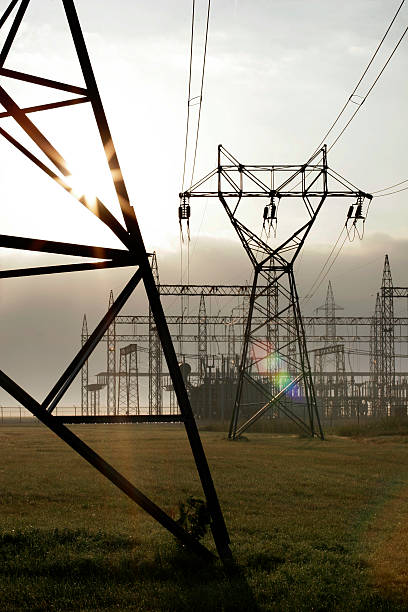 Power lines at dawn stock photo