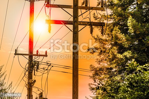 Power-lines by trees. Dangerous condition for wildfires