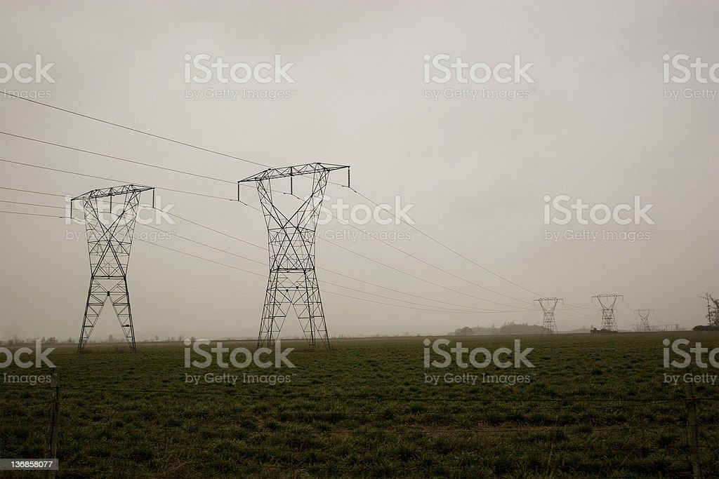 Power Lines In A Field Rows and rows of power lines in a green field with plenty of copy space. Agricultural Field Stock Photo