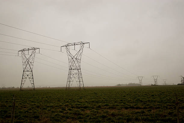 Power Lines In A Field stock photo