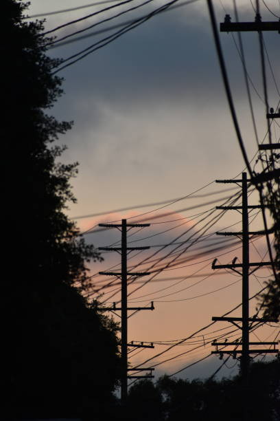 power lines with late afternoon color - steven harrie stock photos and pictures