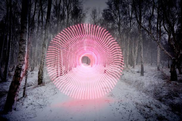 power of winter - organizm żywy zdjęcia i obrazy z banku zdjęć