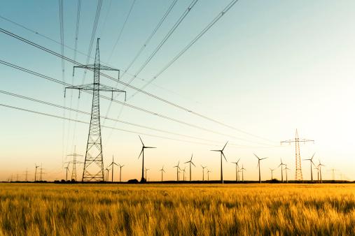 Power poles and wind turbines in autumn sunlight