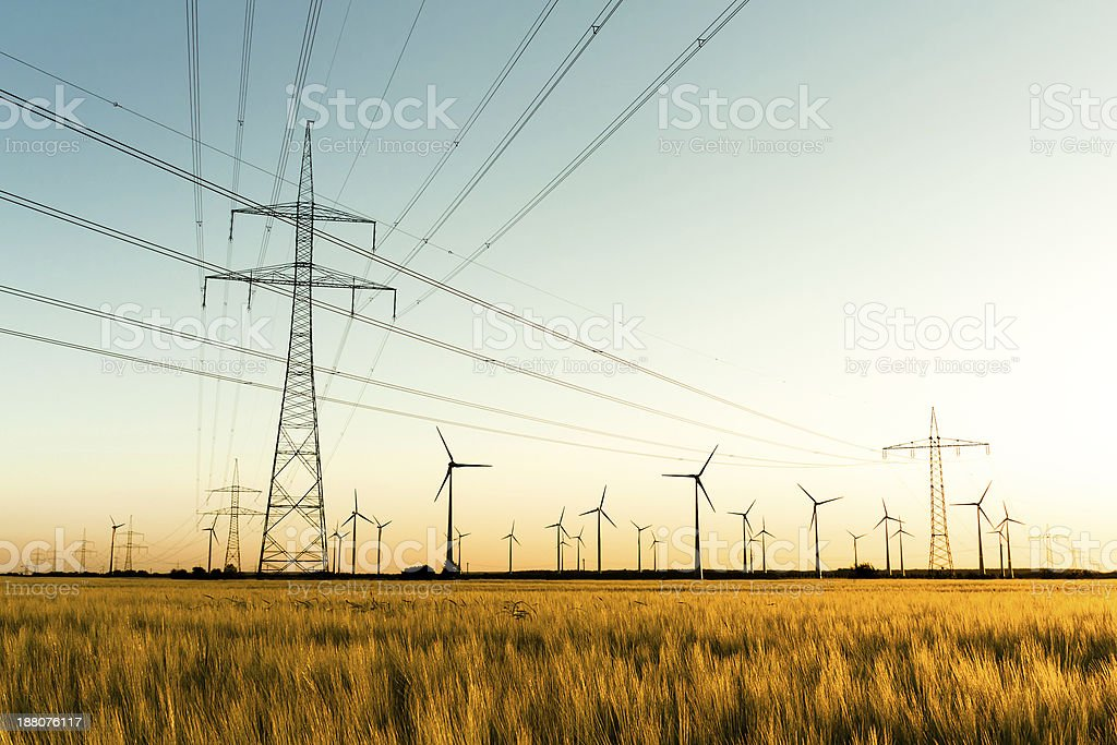 Power poles and wind turbines in autumn sunlight stock photo