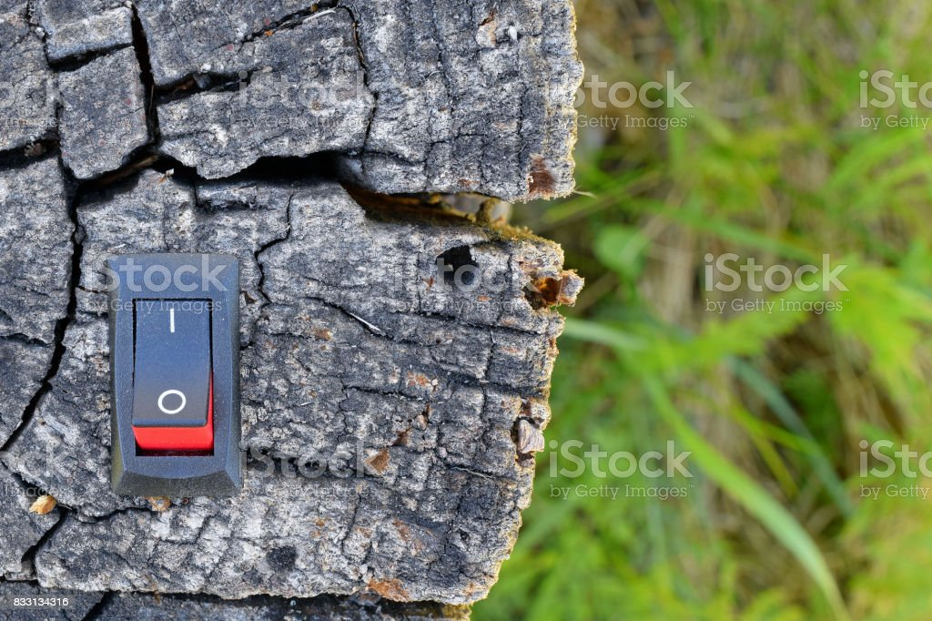Power switch inserted to deadwood. stock photo