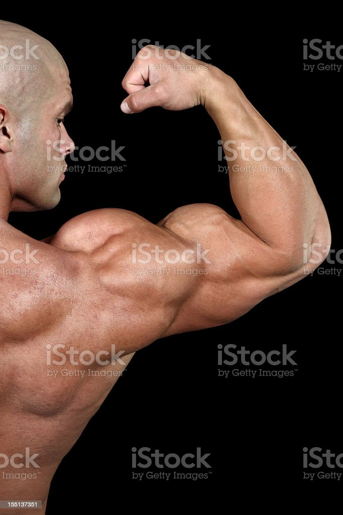 Powerful biceps royalty-free stock photo