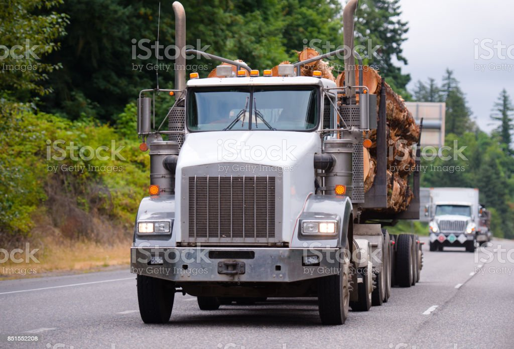 Powerful big rig semi truck transporting logs in front of trucks convoy stock photo