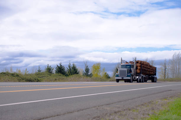 powerful big rig semi truck transporting logs on the straight road - logging equipment stock photos and pictures