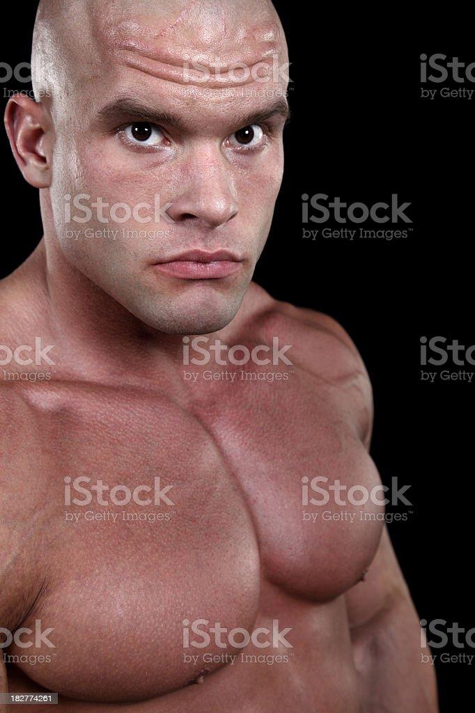 Powerful male portrait royalty-free stock photo