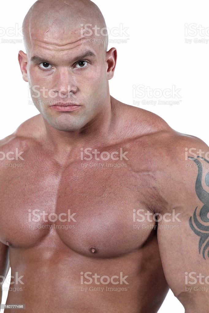 Powerful male portrait royalty-free stock photo
