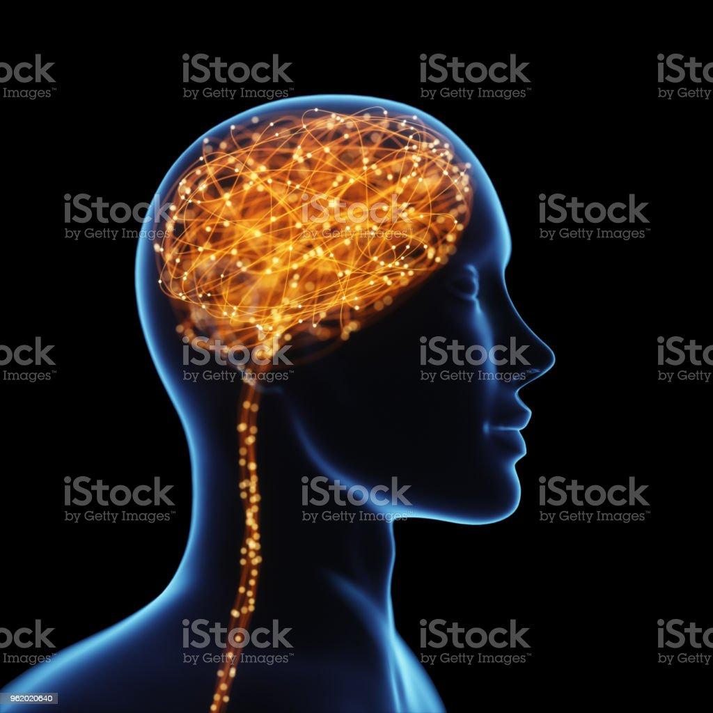 Mächtigen Geist Gehirn Röntgen – Foto