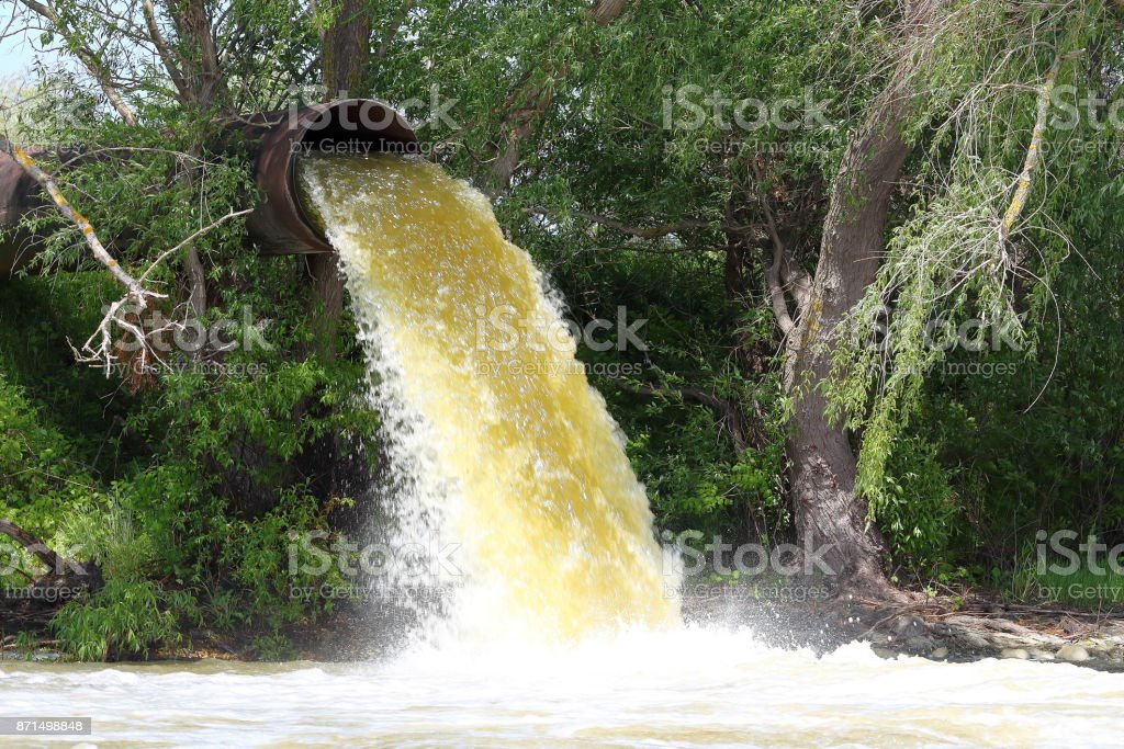 Powerful water flowing from a large pipe using a water pump for agricultural use in paddy fields stock photo