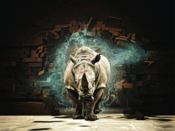 powerfull as rhino rhino destroy brick wall 3d rendering image rhinoceros stock pictures, royalty-free photos & images