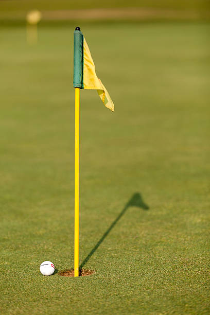 practice golf ball and flag on putting green - carolinemaryan stock pictures, royalty-free photos & images