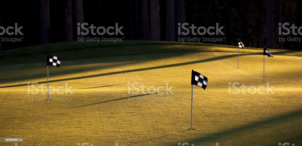 Practice Putting Green royalty-free stock photo