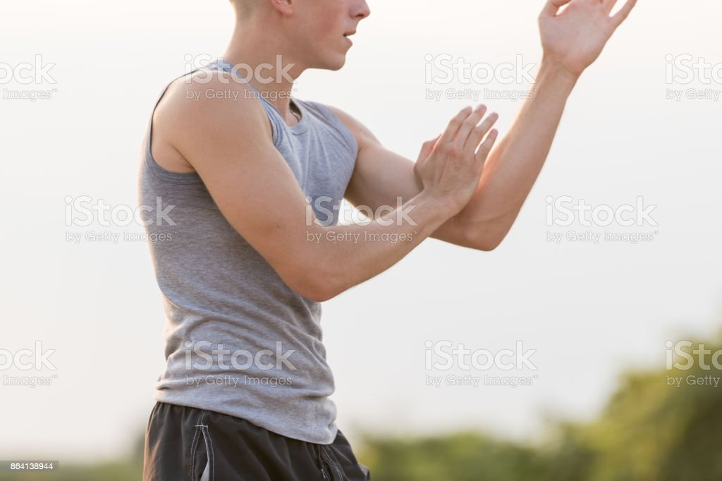 Practicing martial art royalty-free stock photo