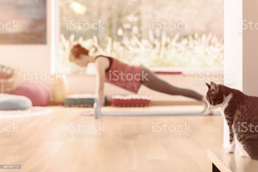 Practicing yoga at home stock photo