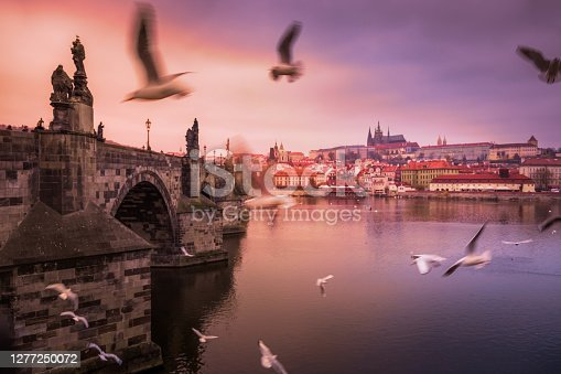 Prague panorama with doves and birds above Charles Bridge at sunrise – Czech Republic