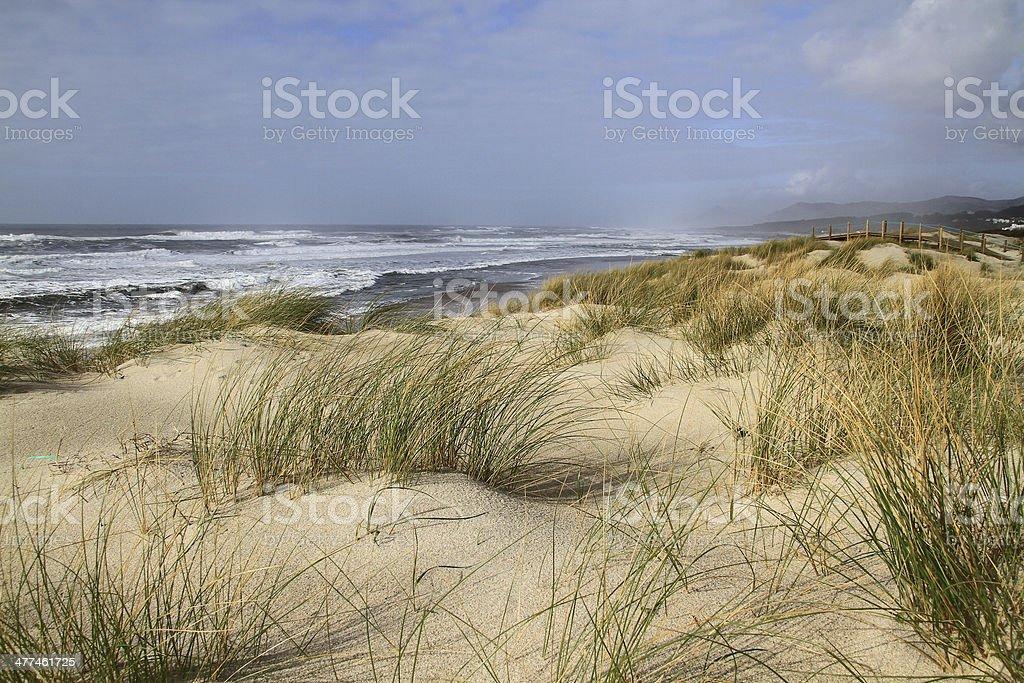 Praia da Arda stock photo