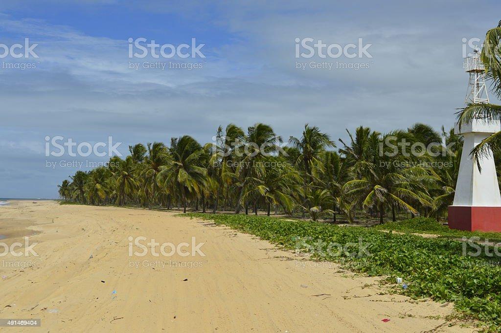 Praia de coqueiros, com farol a direita - foto de acervo