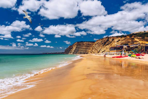 Praia de Porto de Mos mit Möwen, die über den Strand fliegen, Lagos, Portugal. Praia do Porto de Mos, langer Strand in Lagos, Algarve, Portugal. – Foto