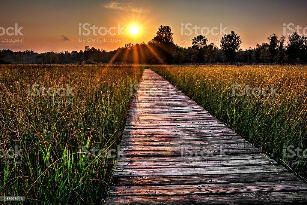 Prairie Boardwalk Sunset stock photo