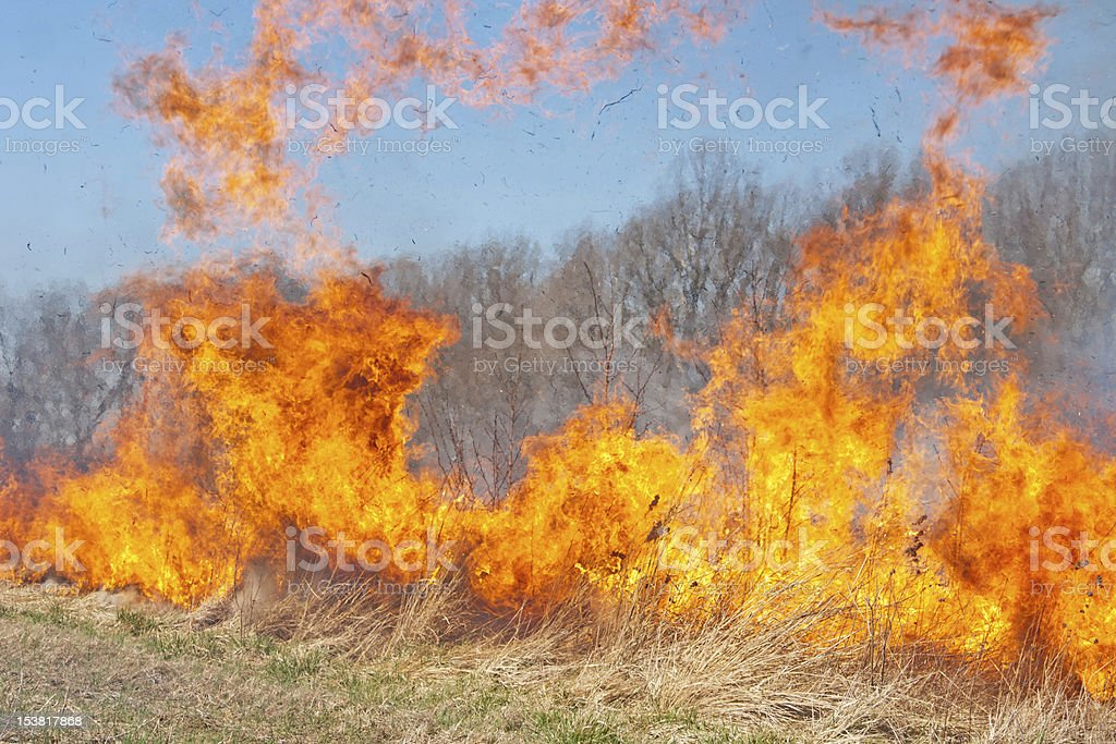 Prairie Fire stock photo