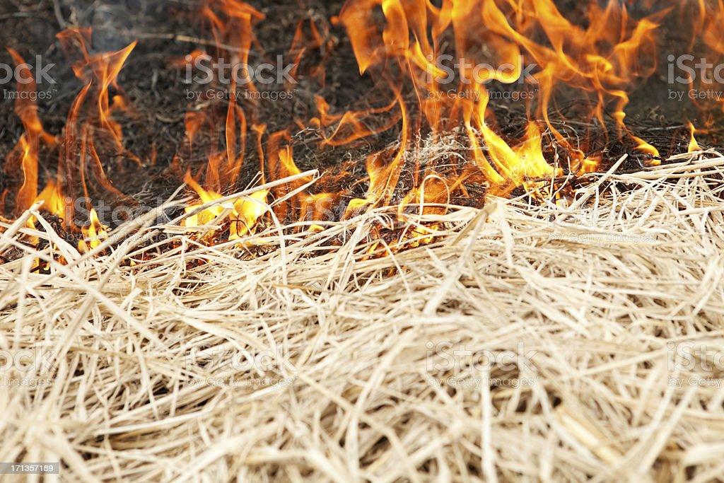 Prairie Grass Wildfire stock photo